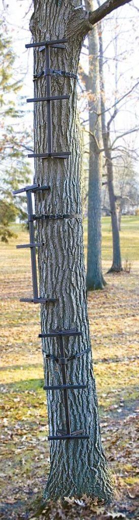 best climbing sticks